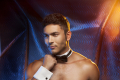 Chippendales Pressematerial