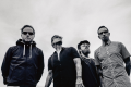 Shinedown Pressematerial